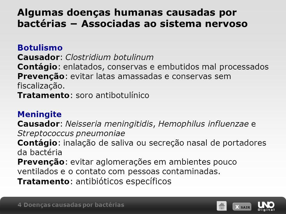 Algumas doenças humanas causadas por bactérias − Associadas ao sistema nervoso