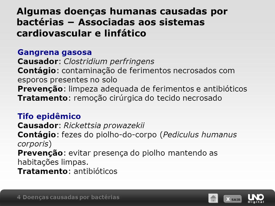Algumas doenças humanas causadas por bactérias − Associadas aos sistemas cardiovascular e linfático