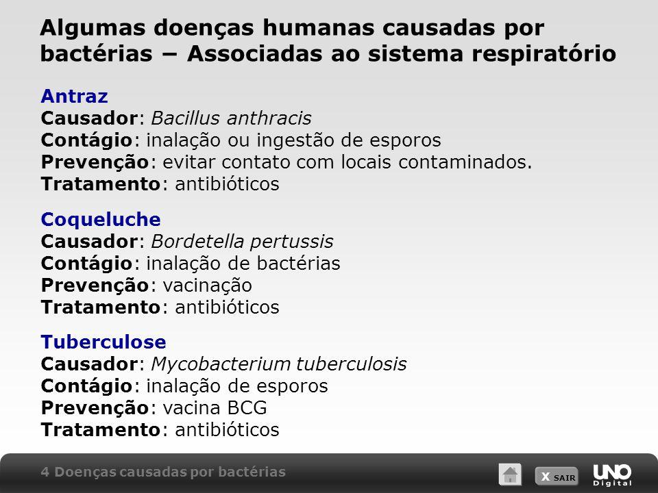 Algumas doenças humanas causadas por bactérias − Associadas ao sistema respiratório