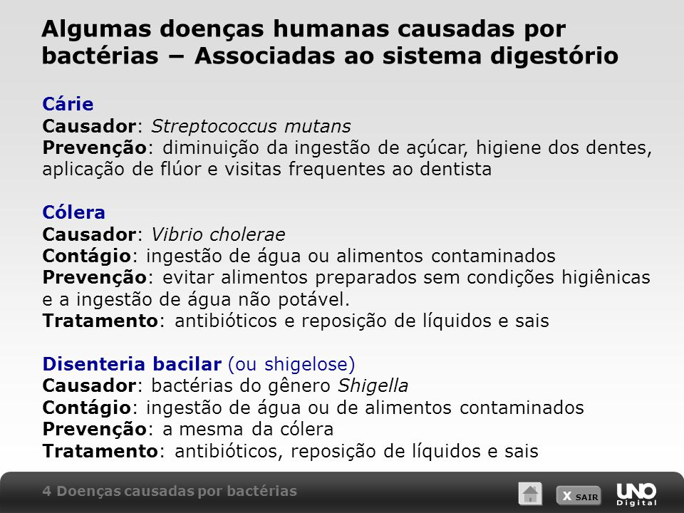 Algumas doenças humanas causadas por bactérias − Associadas ao sistema digestório