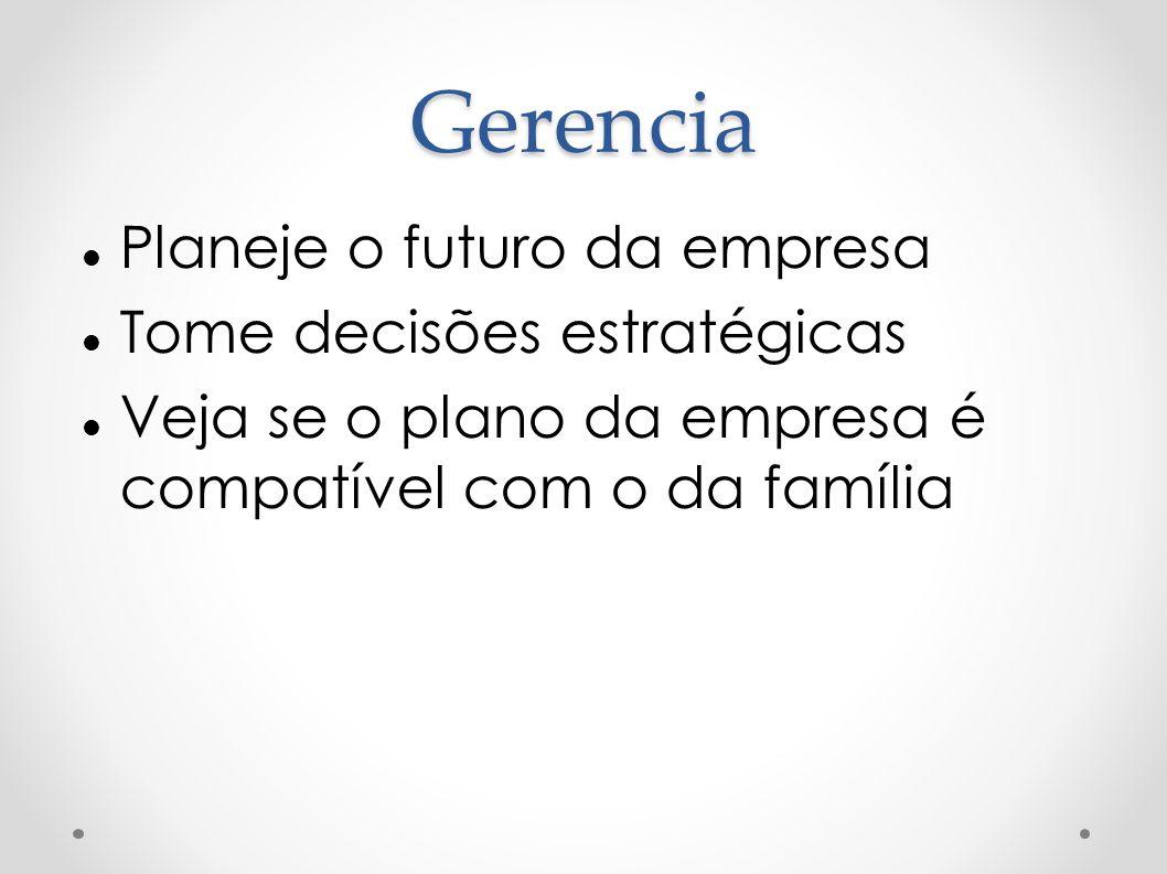 Gerencia Planeje o futuro da empresa Tome decisões estratégicas