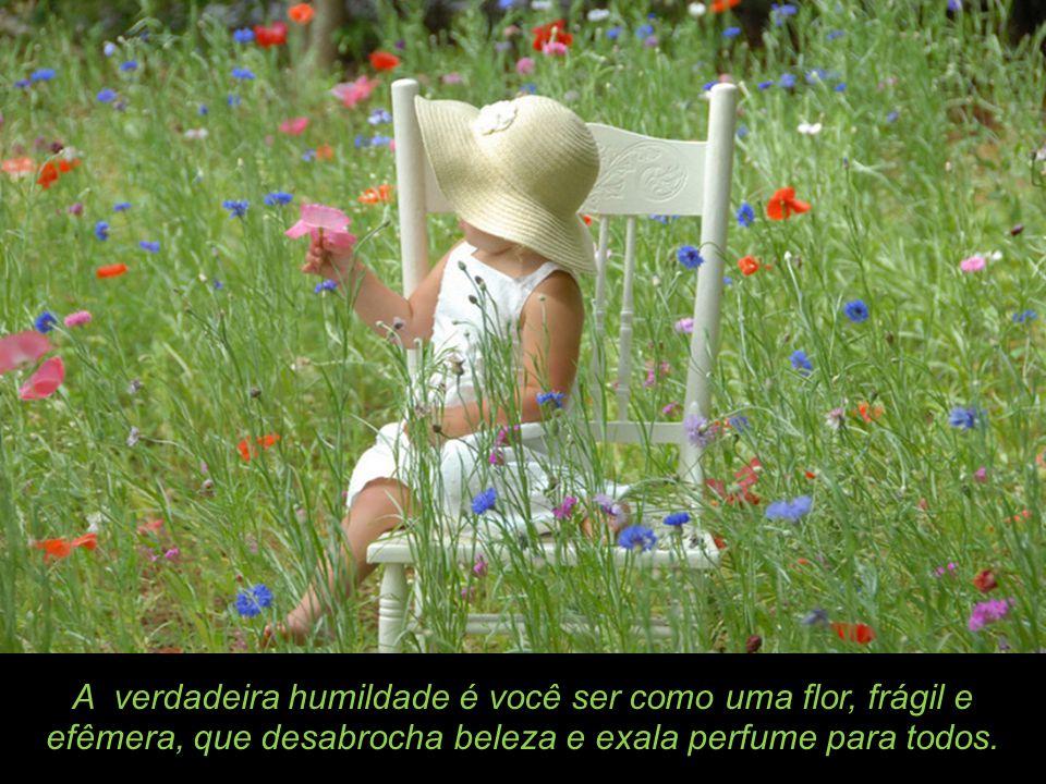 A verdadeira humildade é você ser como uma flor, frágil e efêmera, que desabrocha beleza e exala perfume para todos.