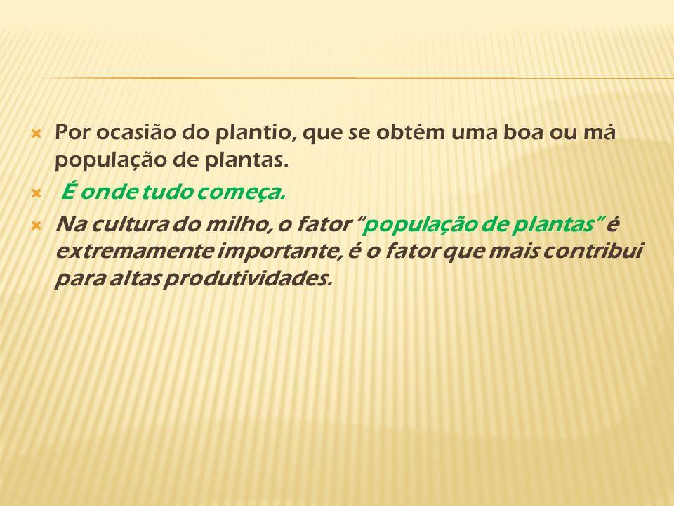 Por ocasião do plantio, que se obtém uma boa ou má população de plantas.