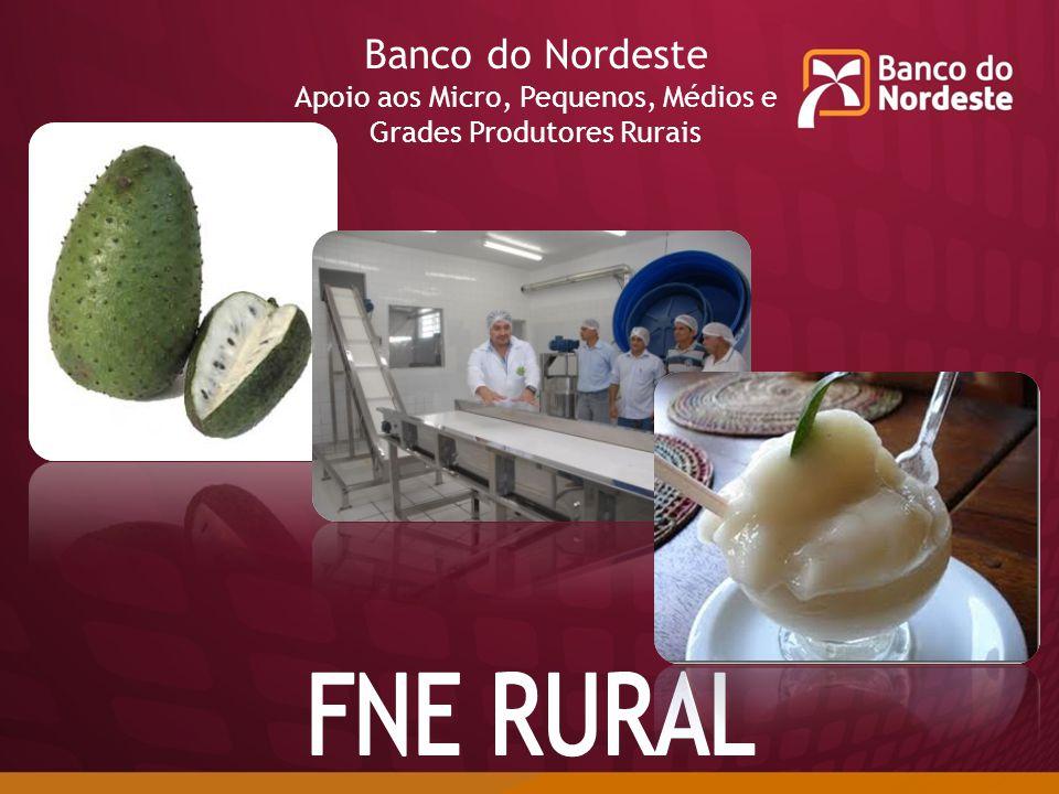 FNE RURAL Banco do Nordeste Apoio aos Micro, Pequenos, Médios e