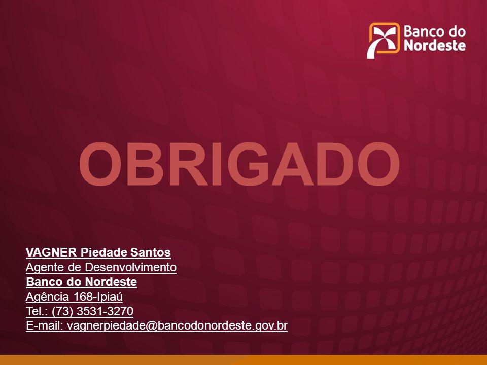 OBRIGADO VAGNER Piedade Santos Agente de Desenvolvimento