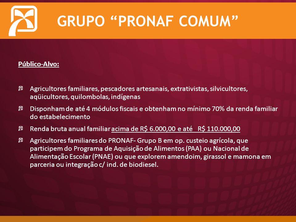 GRUPO PRONAF COMUM Público-Alvo: