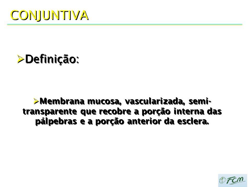 CONJUNTIVA Definição: