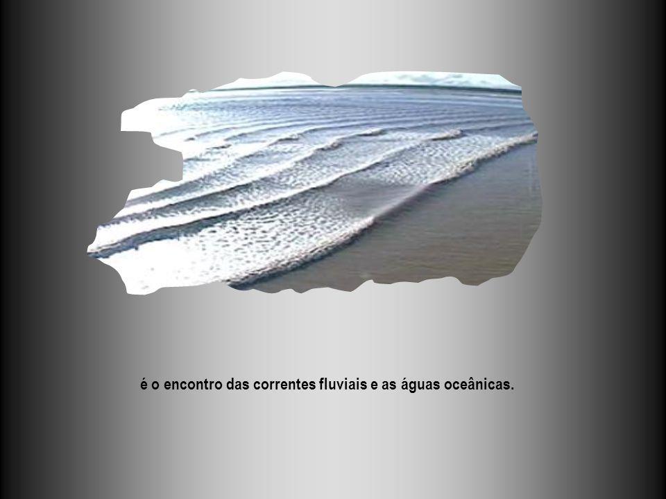 é o encontro das correntes fluviais e as águas oceânicas.