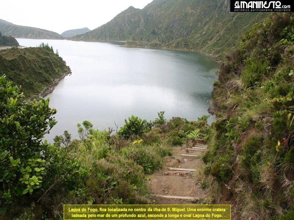 Lagoa do Fogo, fica localizada no centro da ilha de S. Miguel