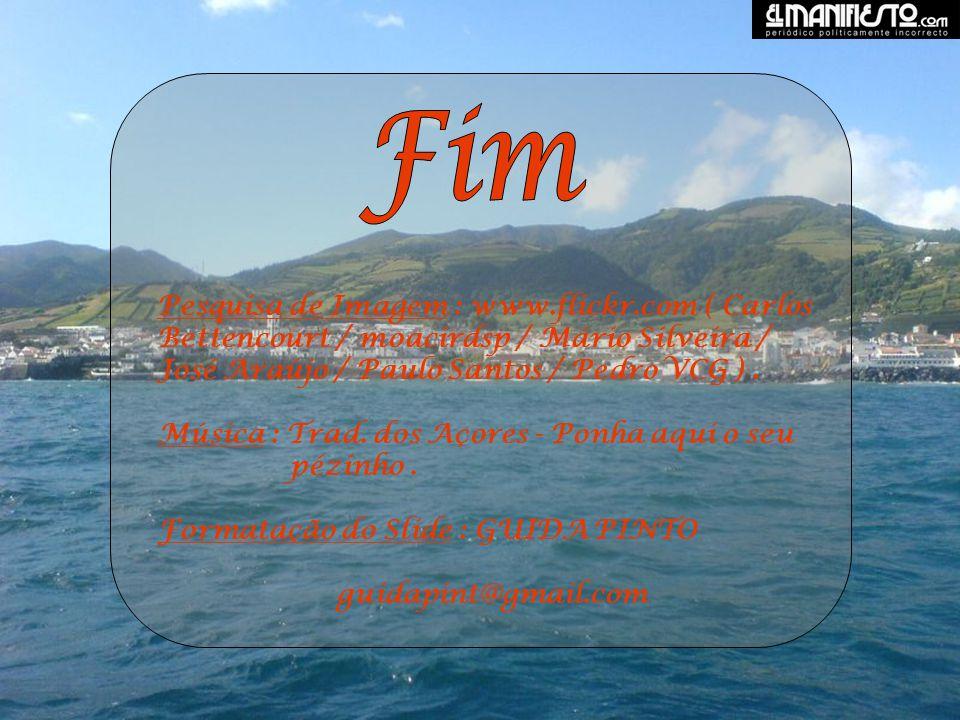Fim Pesquisa de Imagem : www.flickr.com ( Carlos Bettencourt / moacirdsp / Mário Silveira / José Araújo / Paulo Santos / Pedro VCG ) .