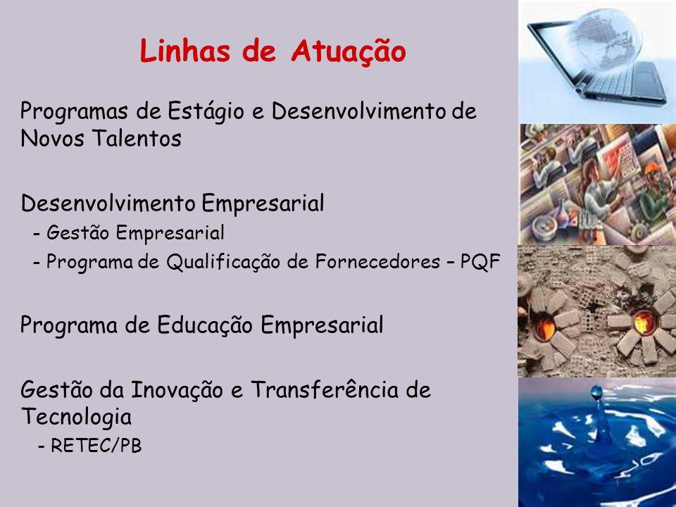 Linhas de Atuação Programas de Estágio e Desenvolvimento de Novos Talentos. Desenvolvimento Empresarial.