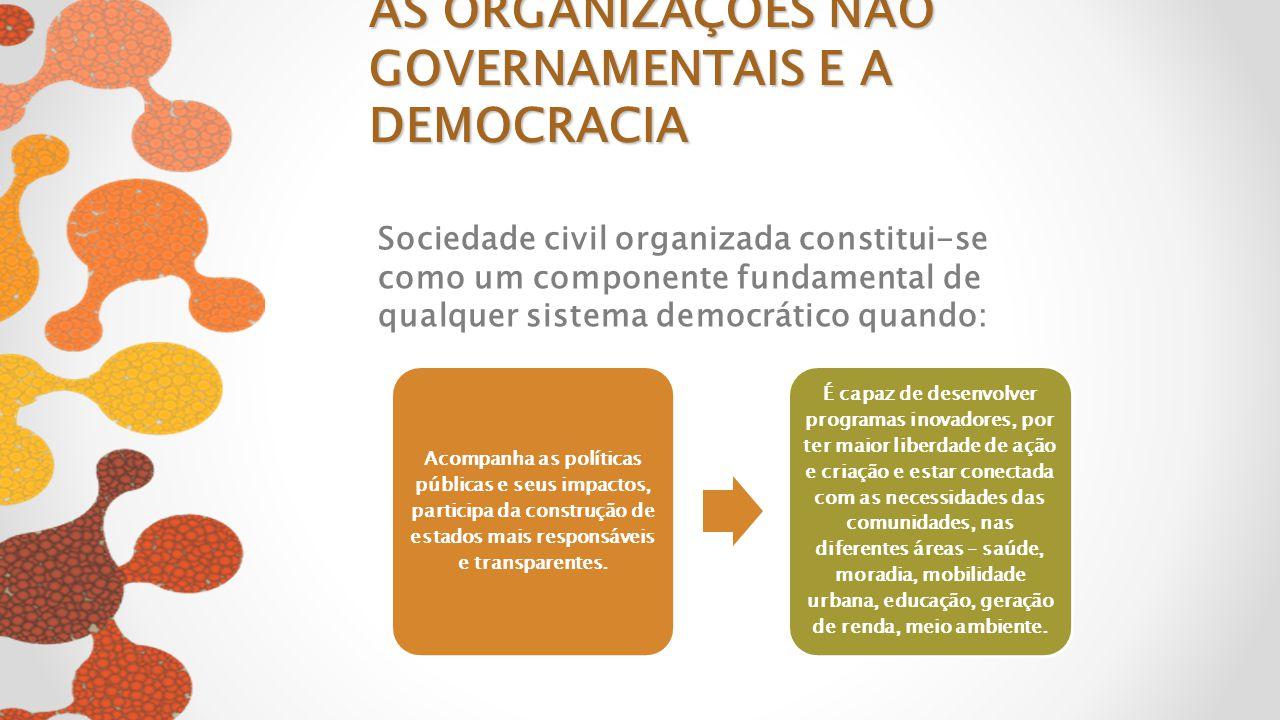 AS ORGANIZAÇÕES NÃO GOVERNAMENTAIS E A DEMOCRACIA