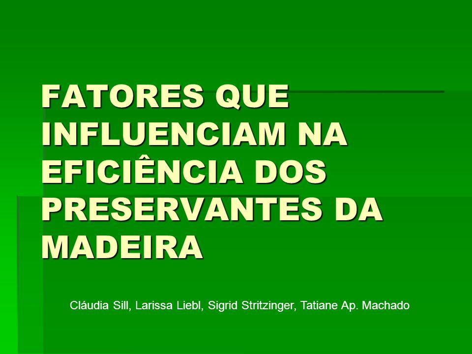 FATORES QUE INFLUENCIAM NA EFICIÊNCIA DOS PRESERVANTES DA MADEIRA
