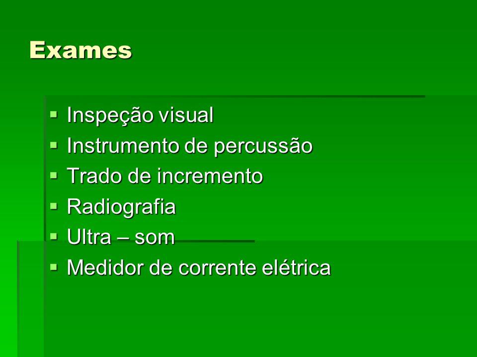 Exames Inspeção visual Instrumento de percussão Trado de incremento