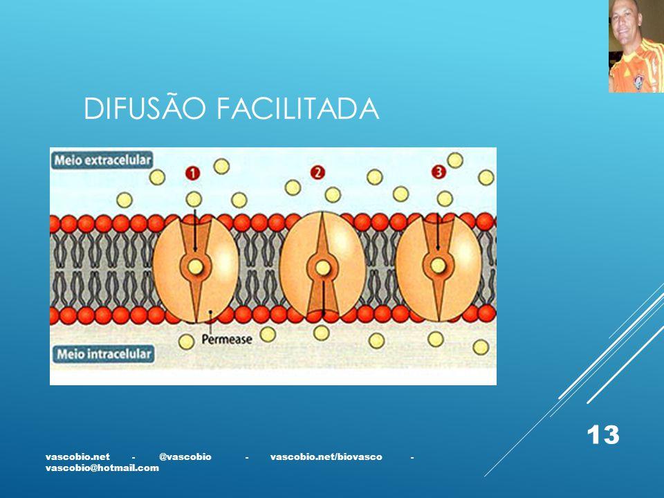 Difusão facilitada vascobio.net - @vascobio - vascobio.net/biovasco - vascobio@hotmail.com.