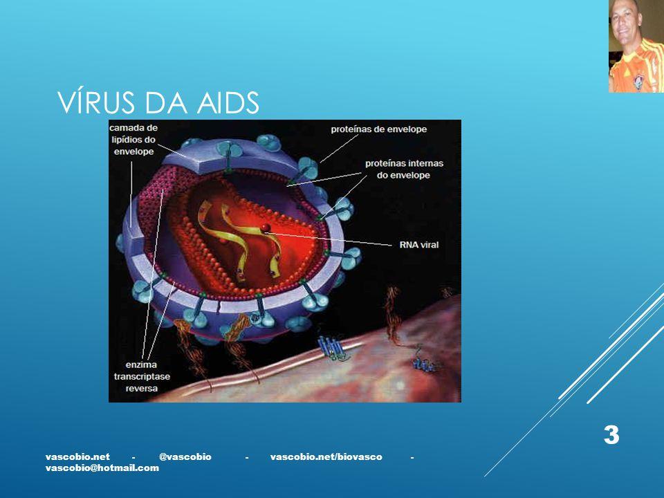 Vírus da AIDS vascobio.net - @vascobio - vascobio.net/biovasco - vascobio@hotmail.com.