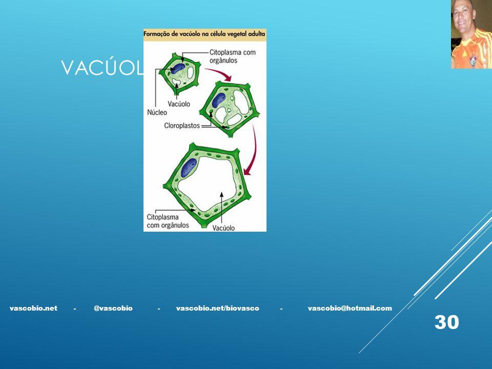 Vacúolo vascobio.net - @vascobio - vascobio.net/biovasco - vascobio@hotmail.com.