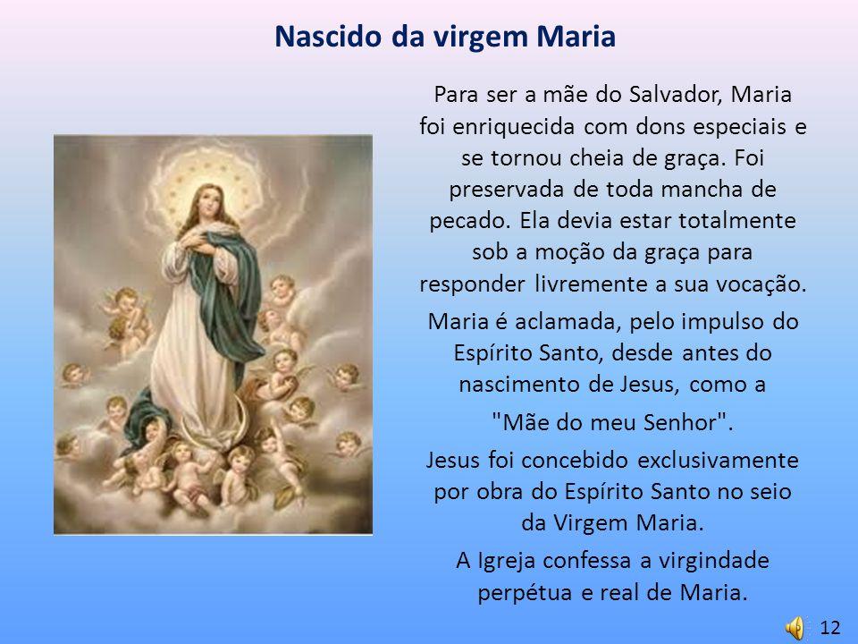 Nascido da virgem Maria