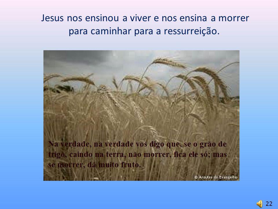 Jesus nos ensinou a viver e nos ensina a morrer para caminhar para a ressurreição.