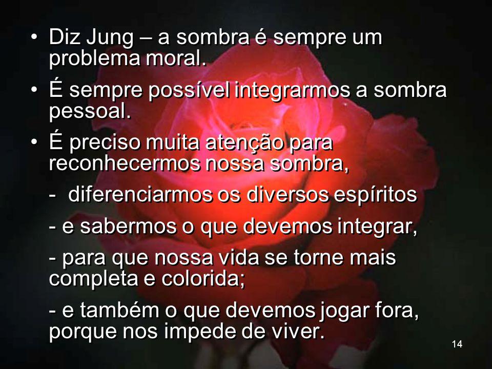Diz Jung – a sombra é sempre um problema moral.