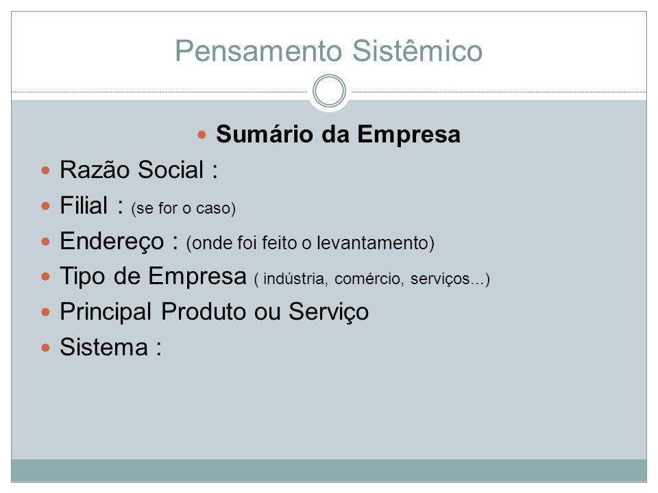 Pensamento Sistêmico Sumário da Empresa Razão Social :