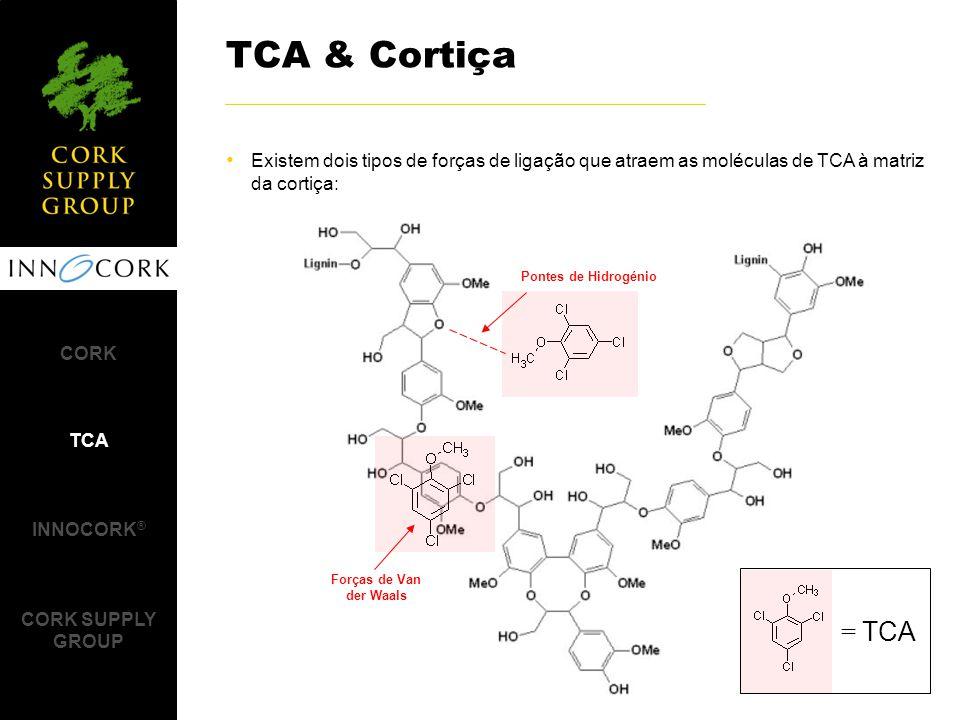 TCA & Cortiça Existem dois tipos de forças de ligação que atraem as moléculas de TCA à matriz da cortiça: