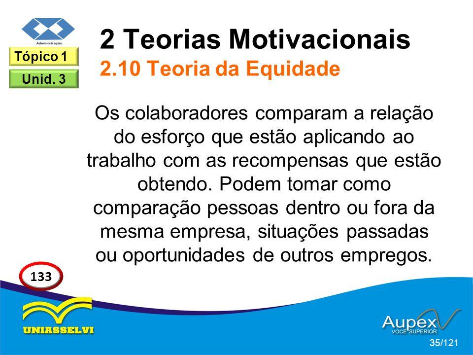2 Teorias Motivacionais 2.10 Teoria da Equidade