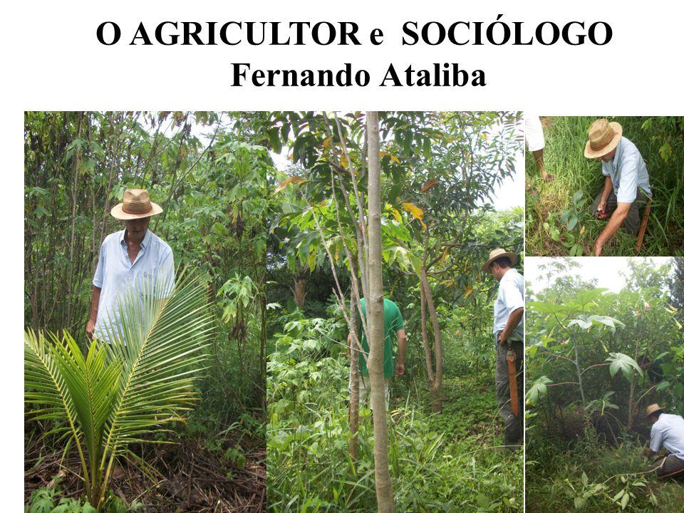 O AGRICULTOR e SOCIÓLOGO Fernando Ataliba