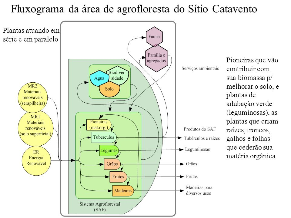 Fluxograma da área de agrofloresta do Sítio Catavento