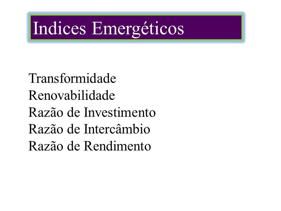Indices Emergéticos Transformidade Renovabilidade