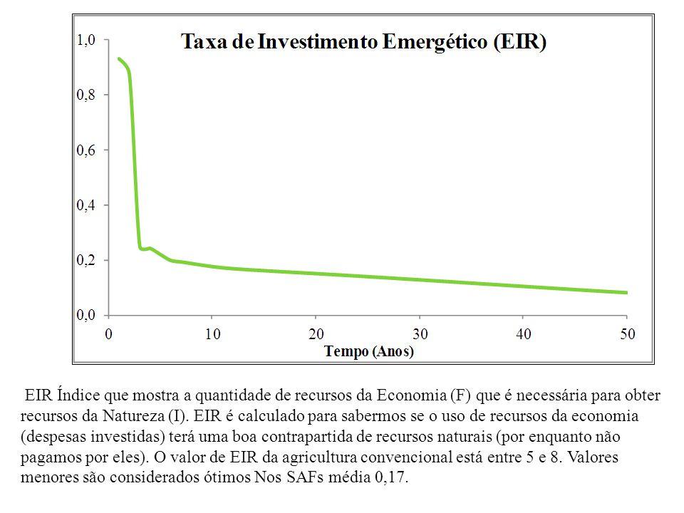 EIR Índice que mostra a quantidade de recursos da Economia (F) que é necessária para obter recursos da Natureza (I).