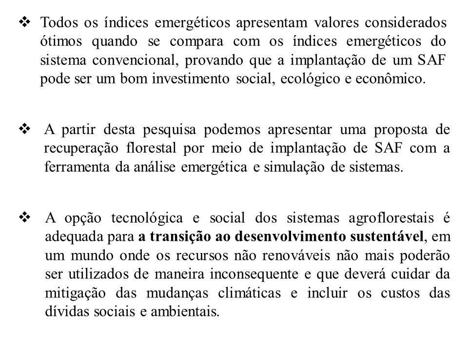 Todos os índices emergéticos apresentam valores considerados ótimos quando se compara com os índices emergéticos do sistema convencional, provando que a implantação de um SAF pode ser um bom investimento social, ecológico e econômico.