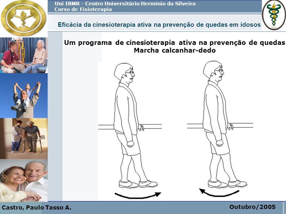 Eficácia da cinesioterapia ativa na prevenção de quedas em idosos