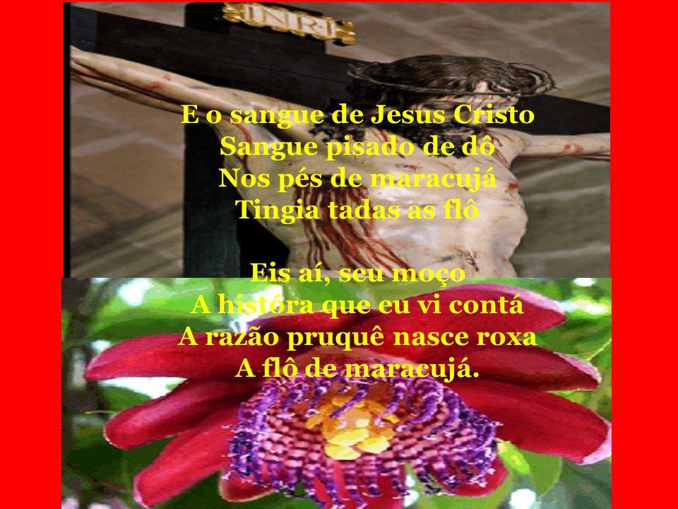 E o sangue de Jesus Cristo Sangue pisado de dô Nos pés de maracujá