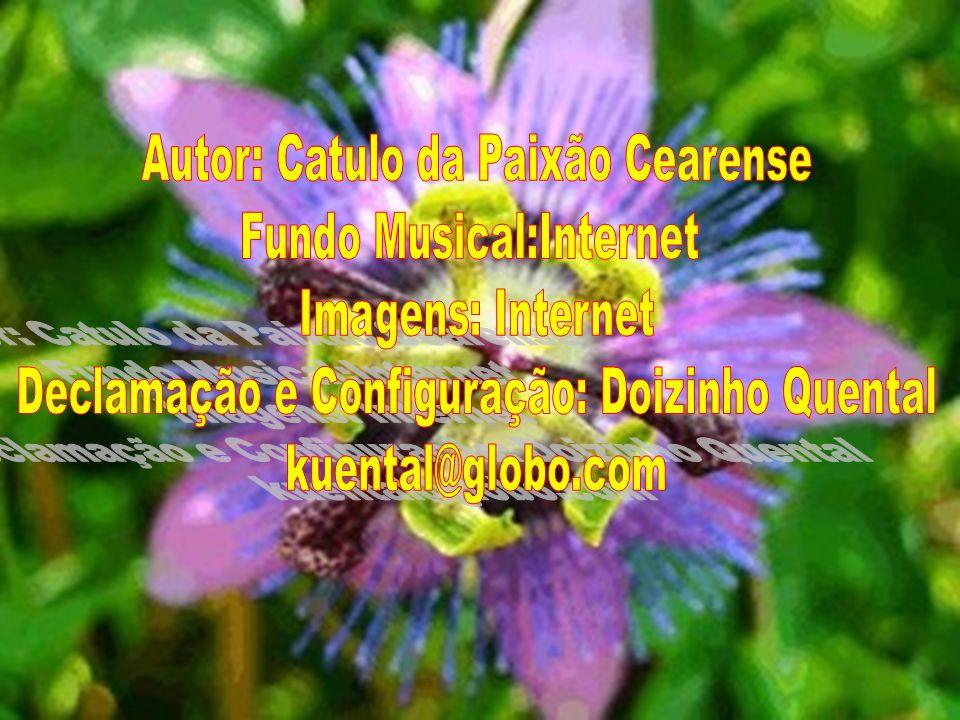 Autor: Catulo da Paixão Cearense Fundo Musical:Internet