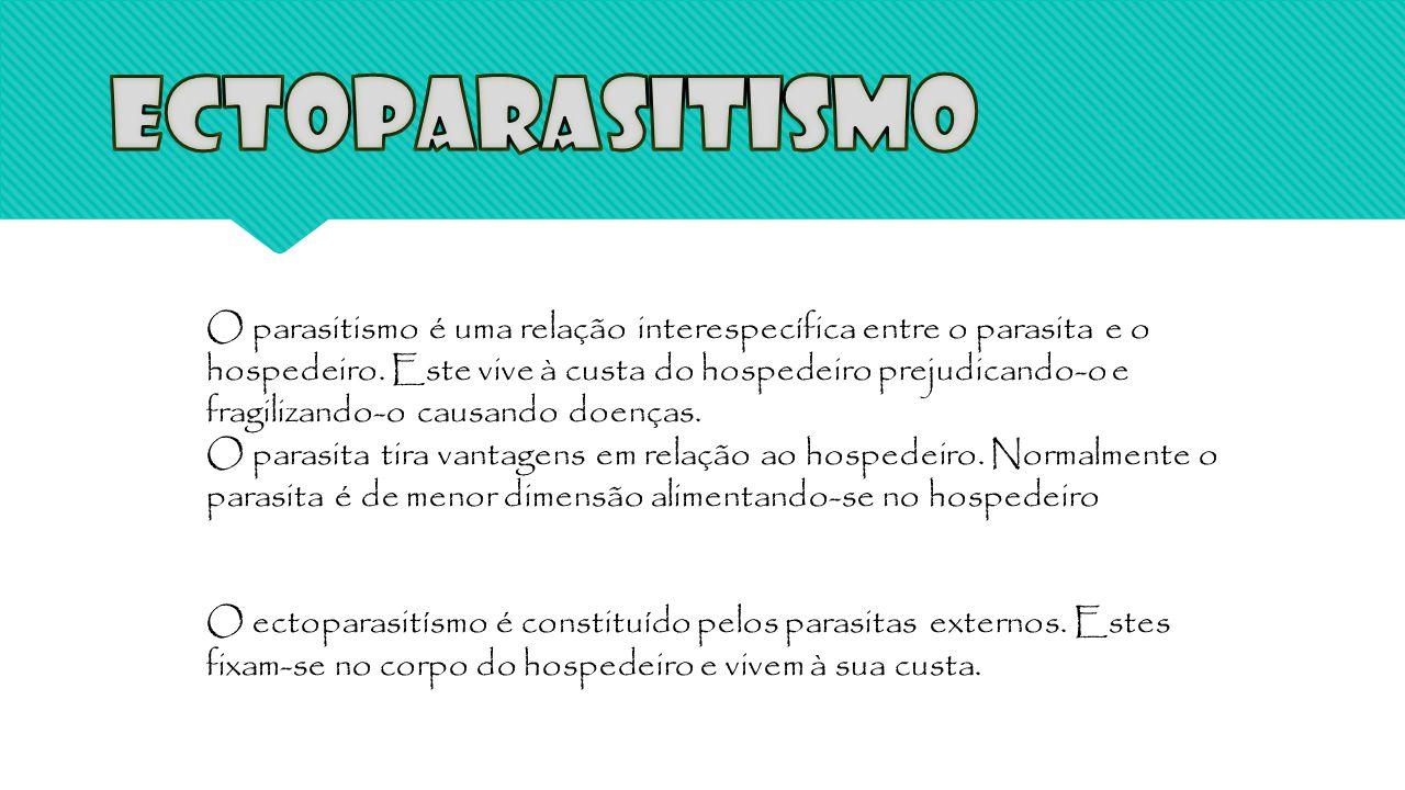 Ectoparasitismo