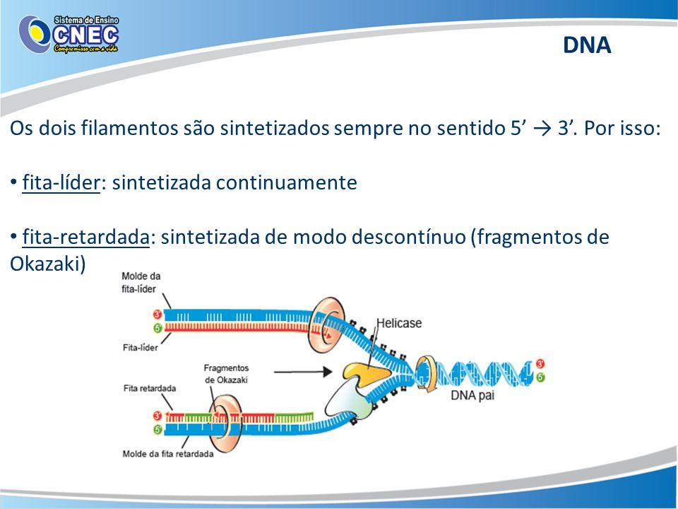 DNA Os dois filamentos são sintetizados sempre no sentido 5' → 3'. Por isso: fita-líder: sintetizada continuamente.