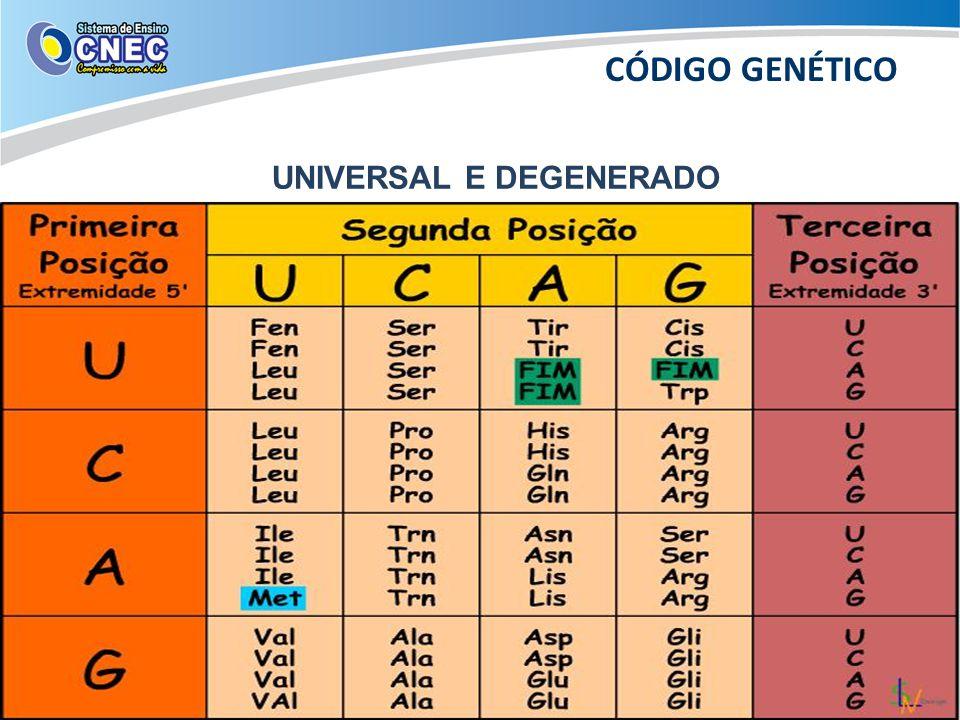 UNIVERSAL E DEGENERADO