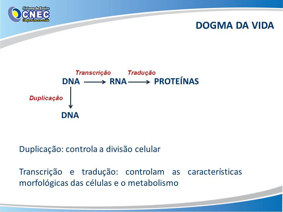 DOGMA DA VIDA DNA RNA PROTEÍNAS DNA