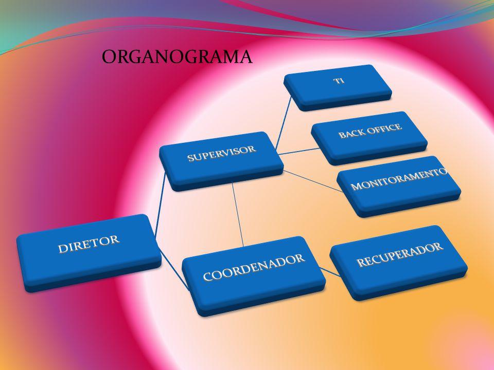 ORGANOGRAMA DIRETOR SUPERVISOR TI BACK OFFICE COORDENADOR RECUPERADOR