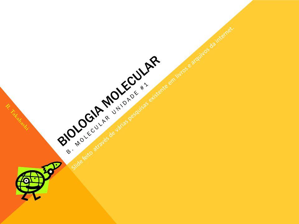Biologia Molecular B. Molecular unidade #1. Slide feito através de várias pesquisas existente em livros e arquivos da internet.