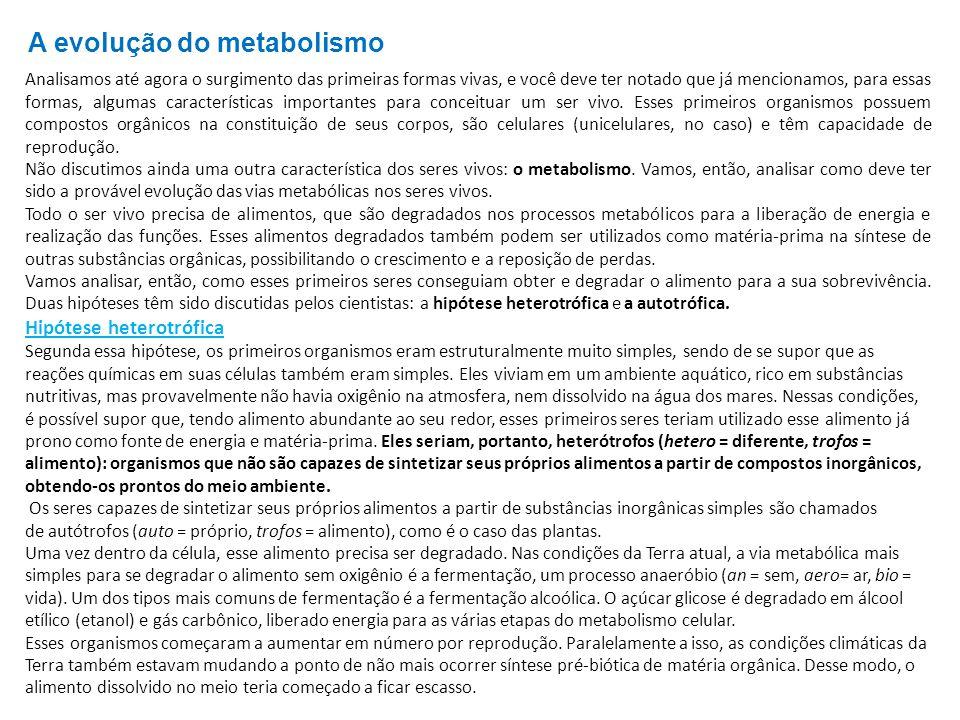 A evolução do metabolismo