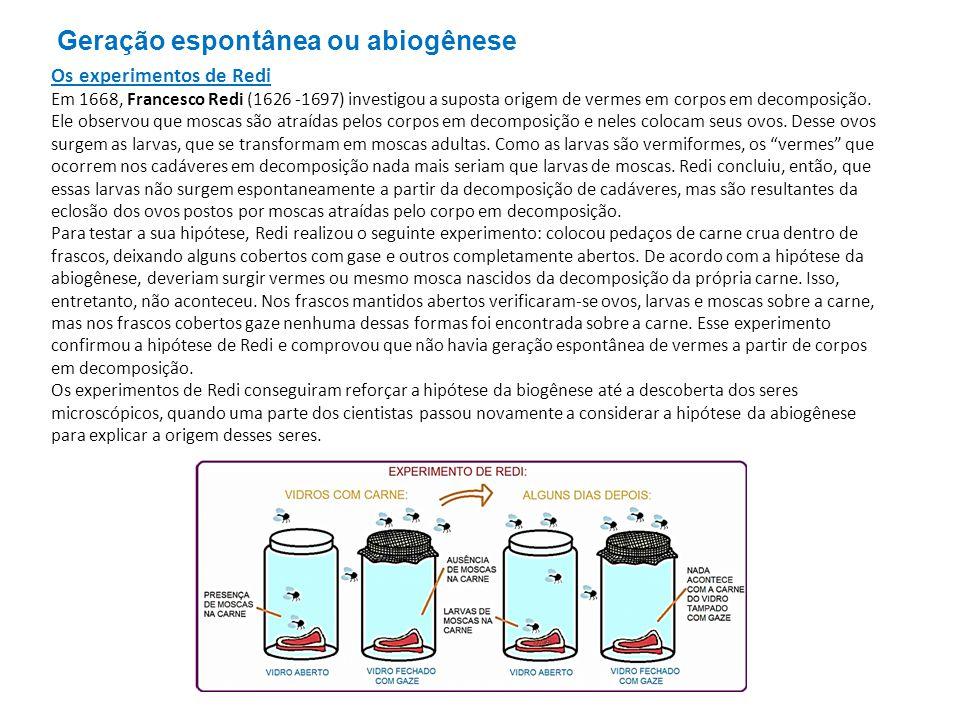 Geração espontânea ou abiogênese