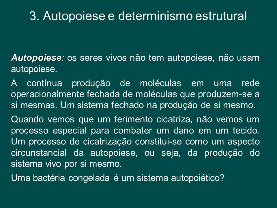 3. Autopoiese e determinismo estrutural