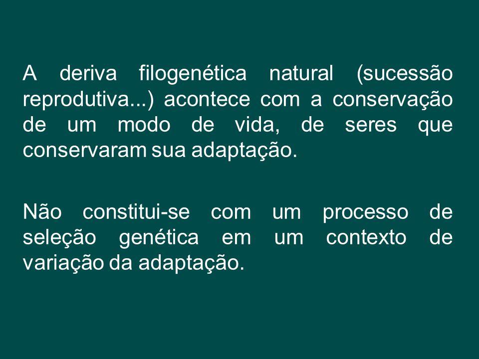 A deriva filogenética natural (sucessão reprodutiva