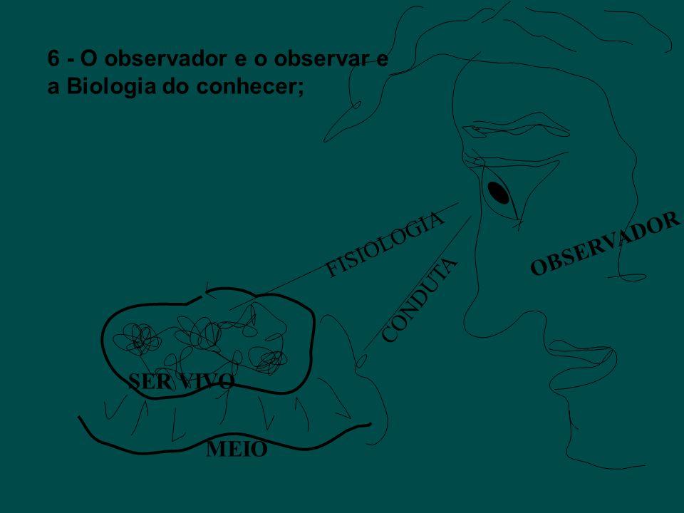 6 - O observador e o observar e a Biologia do conhecer;