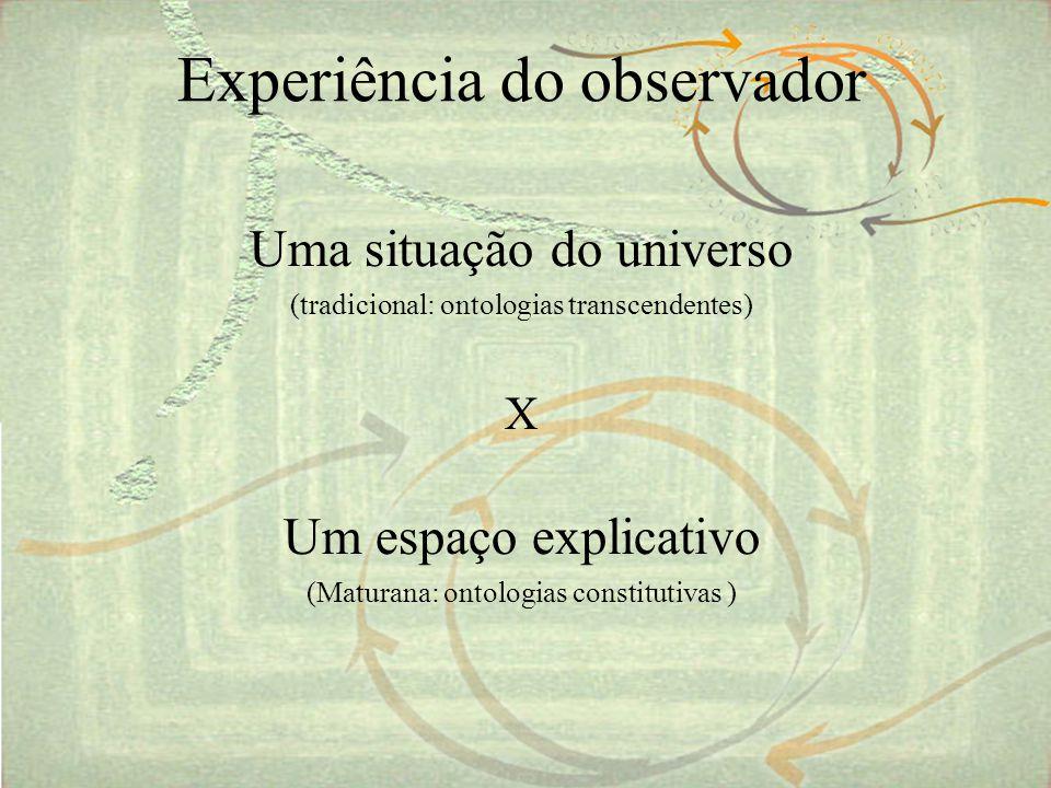 Experiência do observador