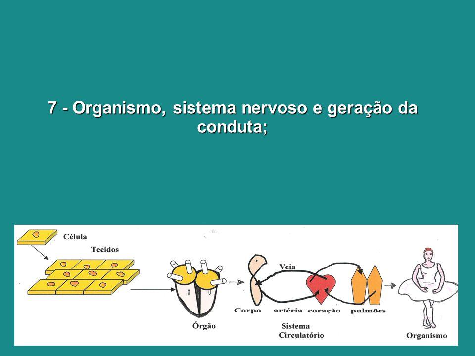 7 - Organismo, sistema nervoso e geração da conduta;