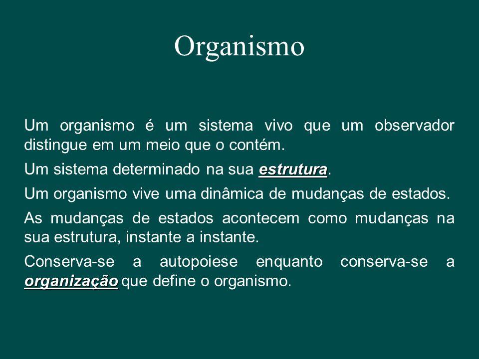 Organismo Um organismo é um sistema vivo que um observador distingue em um meio que o contém. Um sistema determinado na sua estrutura.
