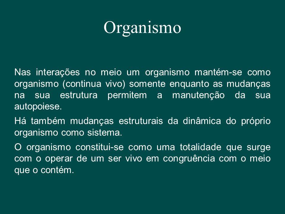 Organismo